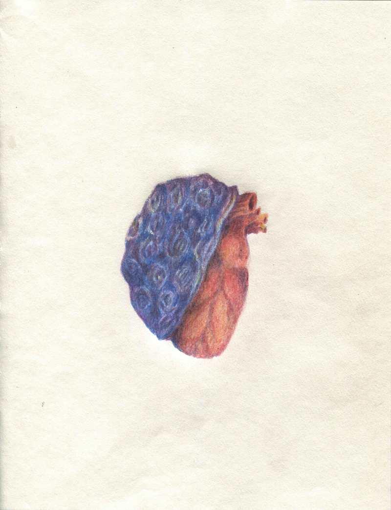 Coeur-lourd-2